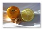 frutos4